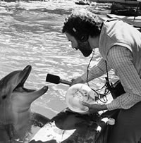 Recording dolphins at Sea World for The Sounds of Science
