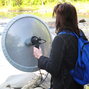Recording with a parabolic microphone.